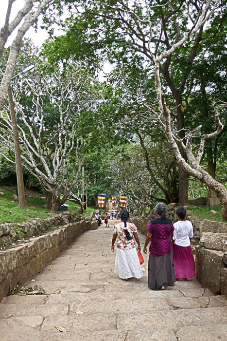 Rencontre avec une tribu reculée du Sri Lanka - bynativ