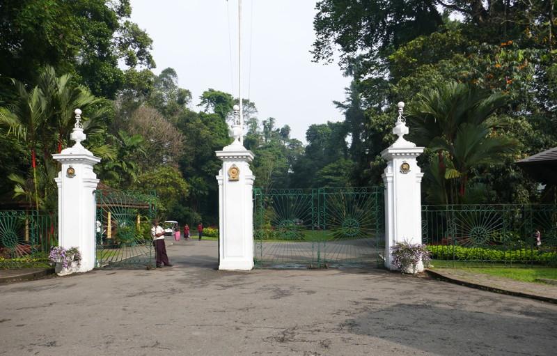 Le jardin botanique de Peradeniya - Le site de Madeleine et ...